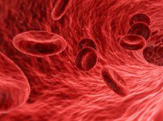 cara meningkatkan trombosit pada demam berdarah