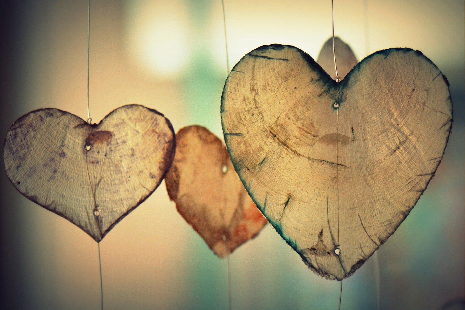 pilihan cinta