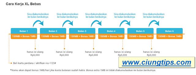 Paket XL Bebas Internet 6 Bulan