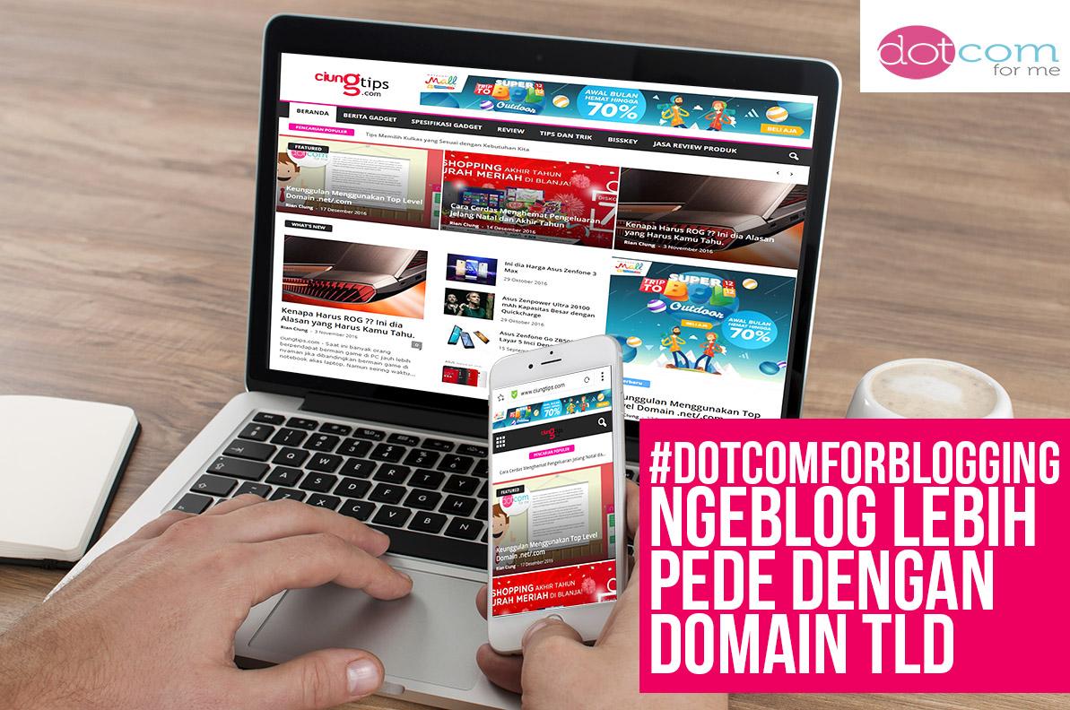 Keunggulan Menggunakan Top Level Domain .net/.com ciungtips