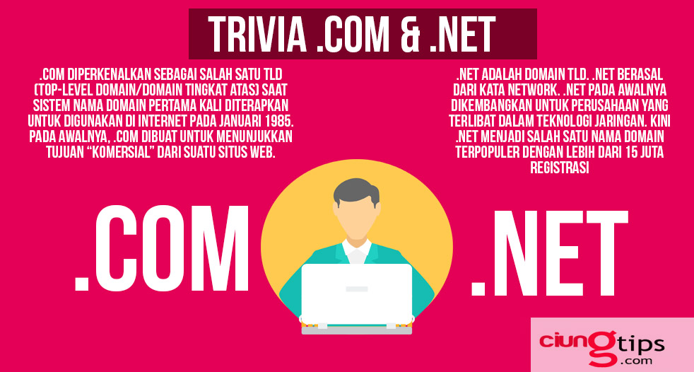 Keunggulan Menggunakan Top Level Domain .net/.com
