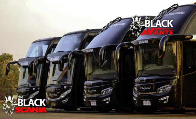 Bus Bejeu Jepara