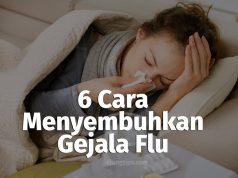 gejala flu