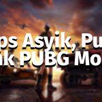 tips push rank pubg