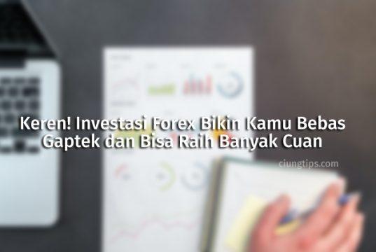 Investasi Forex