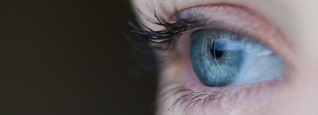 Fungsi Retina